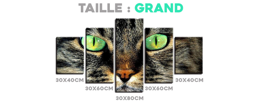 Tableau Taille Grand