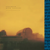 s t a r g a z e & Greg Saunier: Instruments (Colored Vinyl) Vinyl LP (Record Store Day)