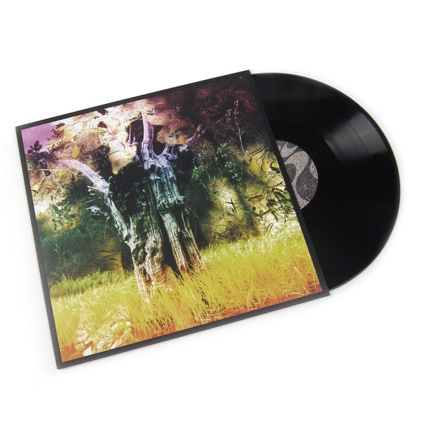"Animal Collective: Meeting Of The Waters EP (180g) Vinyl 12"" (Record Store Day)"