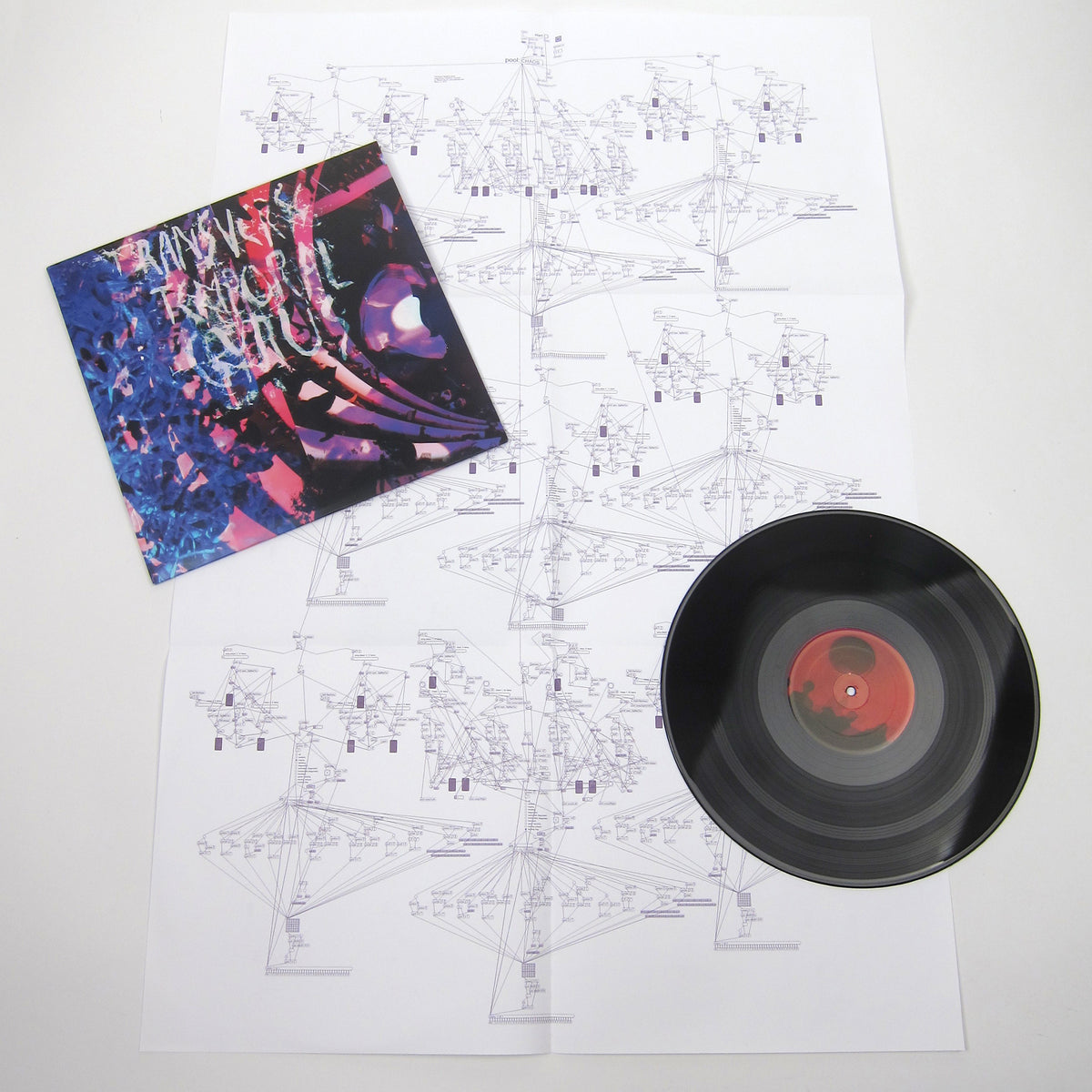 Animal Collective: Transverse Temporal Gyrus (Record Store Day, Poster, Free MP3) LP