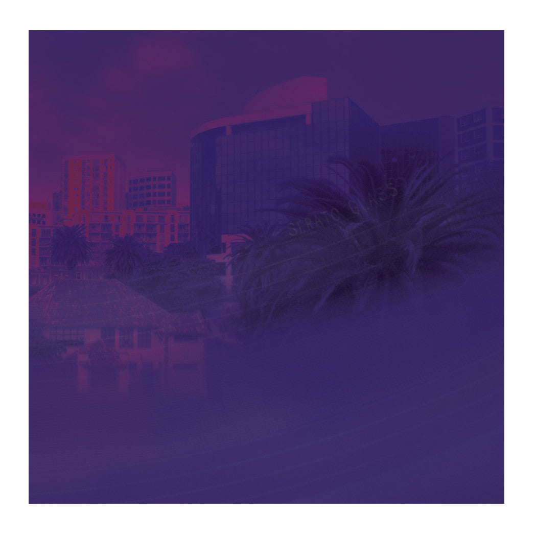 Serato: 10'' Serato Control Vinyl - Purple Glass (Pair) cover
