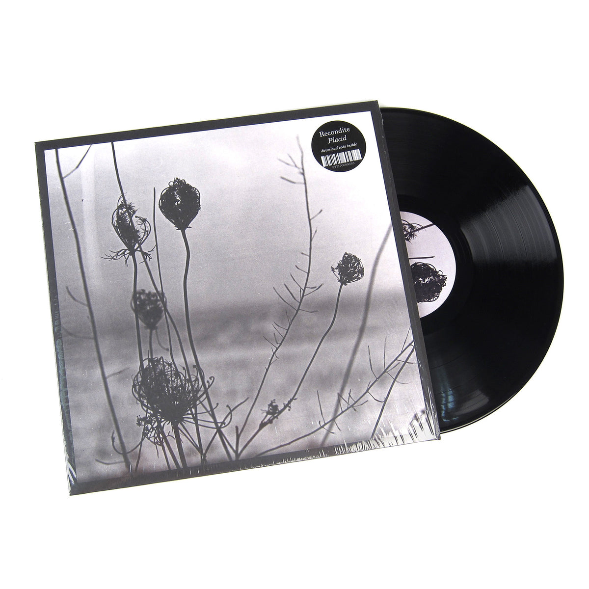 Recondite: Placid Vinyl 2LP