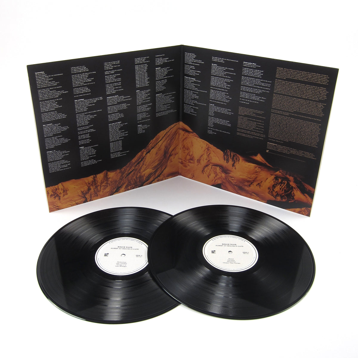 Rogue Wave: Asleep At Heaven's Gate 10th Anniversary Edition Vinyl 2LP
