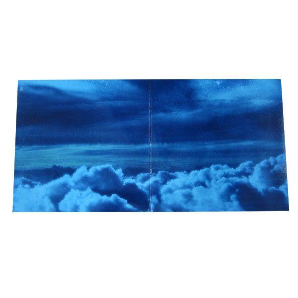 Sebastien Tellier: My God is Blue (Blue Vinyl) LP 2