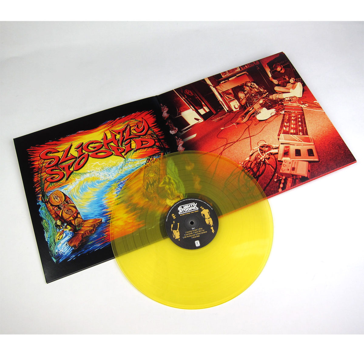 Slightly Stoopid: Everything You Need (Colored Vinyl, Free MP3) Vinyl LP detail