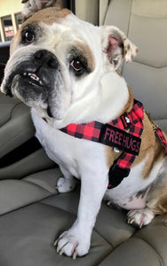 Adjustable Harness -Buffalo Plaid