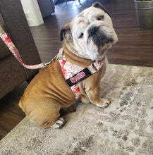 Load image into Gallery viewer, Adjustable Dog Harness - Pink Floral SOLD OUT!!!!!!!!!!!