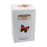 trapped butterfly illusion optical illusion interactive illusion illusion home decor illusion for home home decor illusion butterfly in a jar
