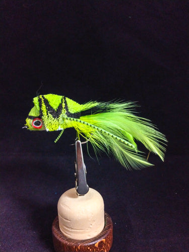 2/0 Chartreuse Diver/hackle-tail