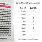 Eyelash Extensions Mixed Tray Lengths Set Premade Volume Fans NZ