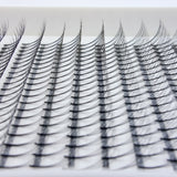 Close up of C Curl Lash Trays NZ