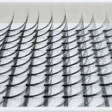 Eyelash Extension Supplies NZ - 7D Lash Trays