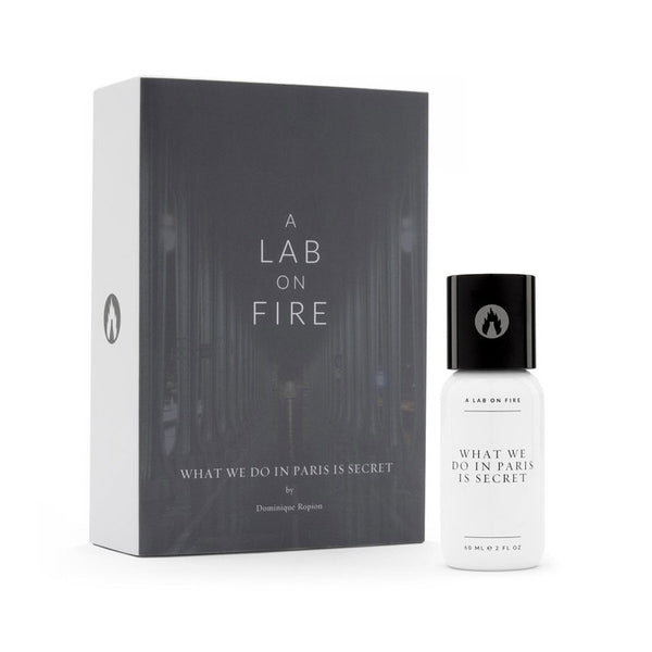 A Lab on Fire – What We Do In Paris Is Secret EDP
