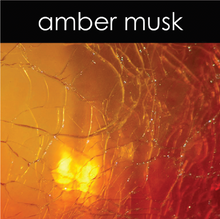 Load image into Gallery viewer, Amber Musk Candle
