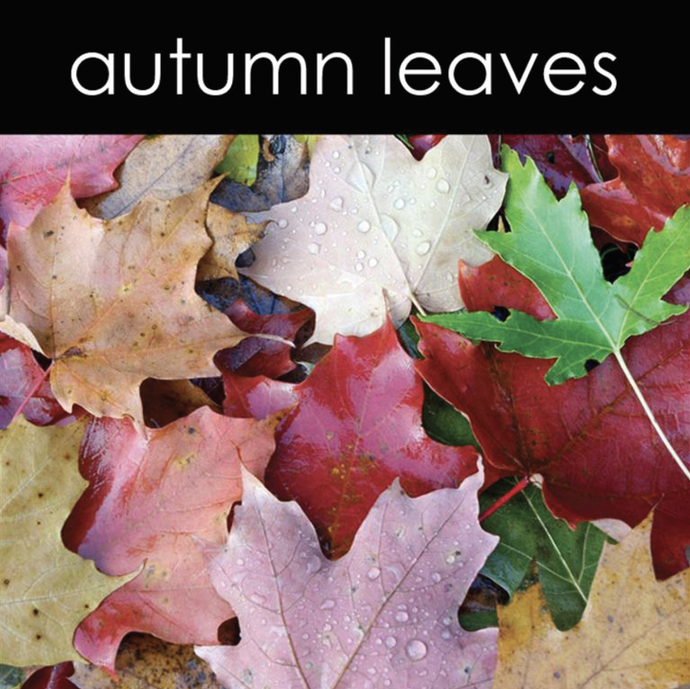 Autumn Leaves Fragrance Oil (Seasonal)