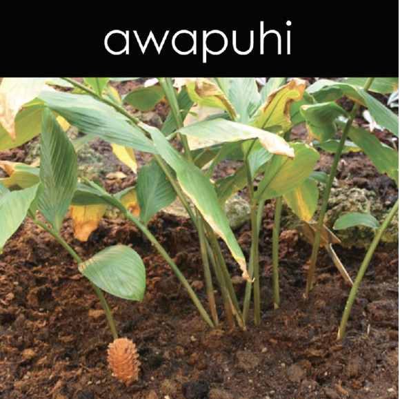 Awapuhi Fragrance Oil