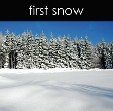 Load image into Gallery viewer, First Snow Fragrance Oil (Seasonal)