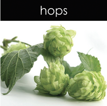 Load image into Gallery viewer, Hops Fragrance Oil