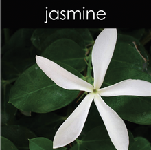 Load image into Gallery viewer, Jasmine Soy Wax Melts