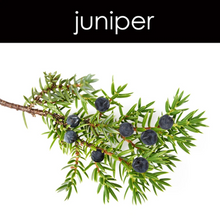 Load image into Gallery viewer, Juniper Fragrance Oil