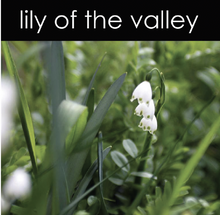 Load image into Gallery viewer, Lily of the Valley Soy Wax Melts