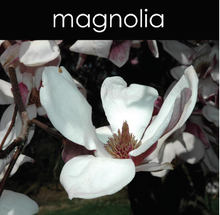 Load image into Gallery viewer, Magnolia Candle