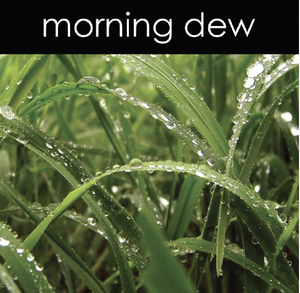 Morning Dew Fragrance Oil