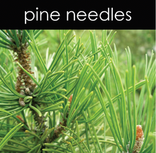 Load image into Gallery viewer, Pine Needles Candle
