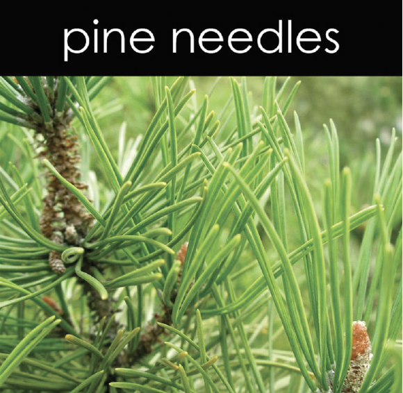 Pine Needles Aromatic Mist