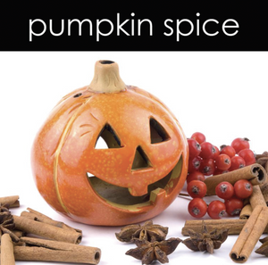 Pumpkin Spice Soy Wax Melts