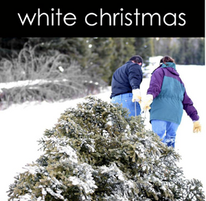 White Christmas Aromatic Mist (Seasonal)