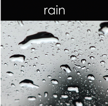 Load image into Gallery viewer, Rain Fragrance Oil