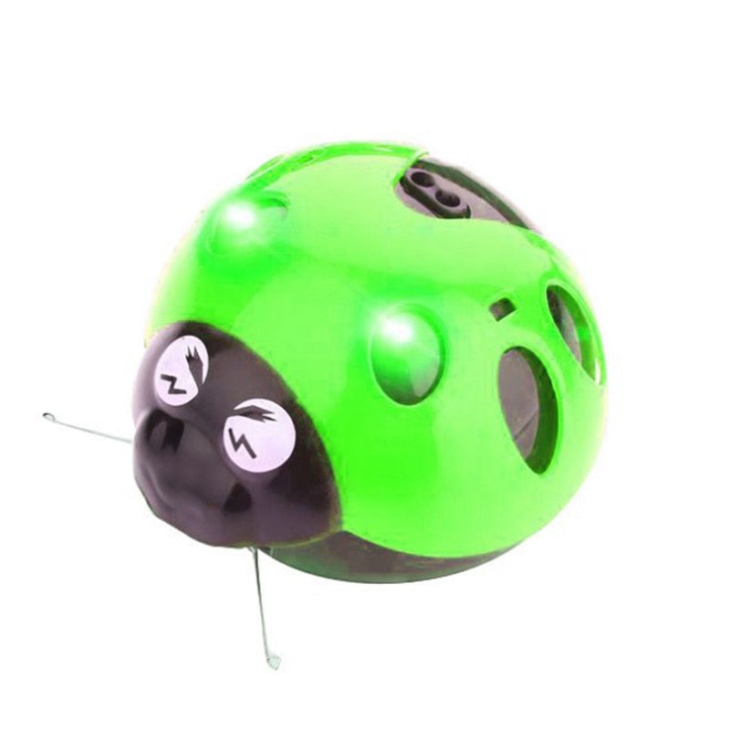 Bug Shaped Electronic Pop Weasel Toy