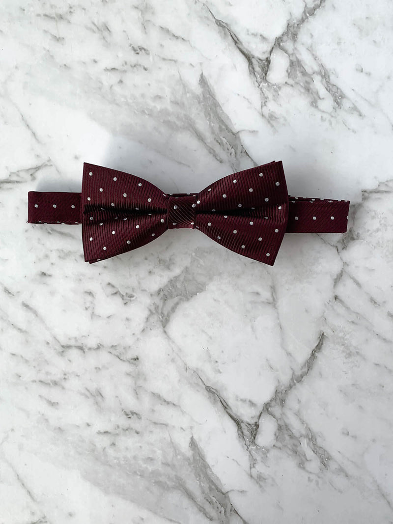 Voyage of the Vikings Silk Bow Tie Set