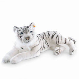 Tuhin the White Tiger