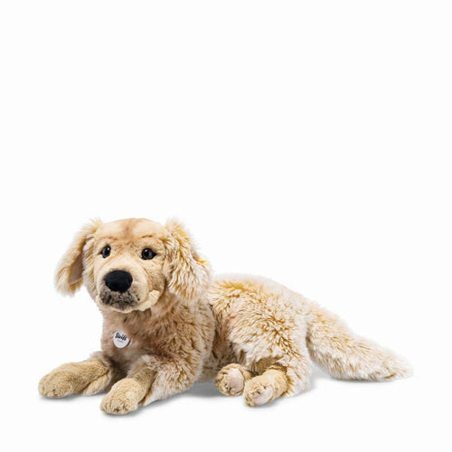 Andor Golden Retriever
