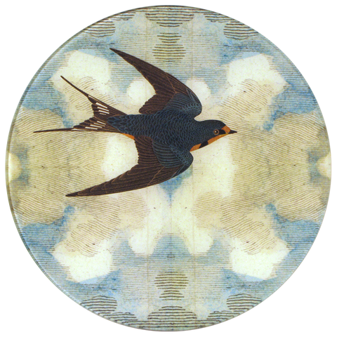 Swallow in Flight (Flying Right)