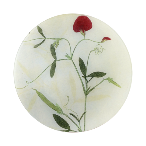 #30 - Lathyrvs (Red Sweet Pea) Pressed Leaves