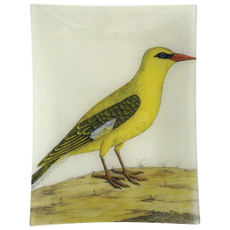 #20 - Bengali Yellow Bird