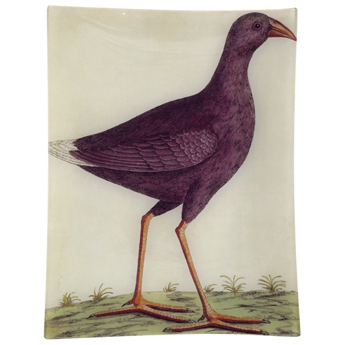 #18 - Purple Bird