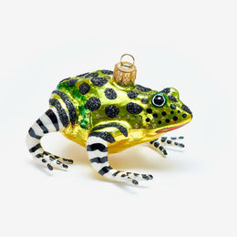 Multicolor Frog Ornament