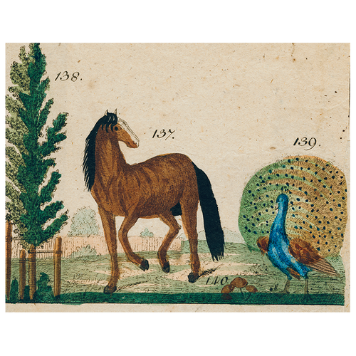 Horse and Peacock (p 277)