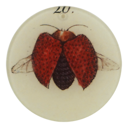 "Insect #20 (3"" Round Ornament) - SALE"
