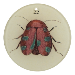 "Insect #21 (3"" Round)"