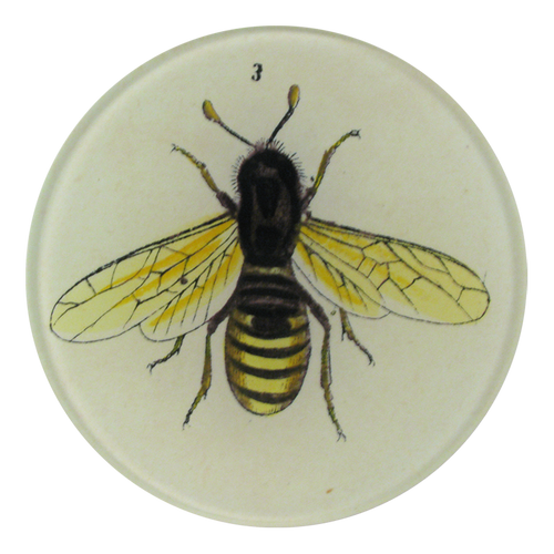 Bee three is a yellow and black bee with yellow wings and is hand made to order with decoupage.