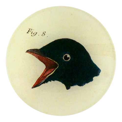 Bird Heads (Figure 8) is a four inch round plate with the head of a bird. Made to order using decoupage