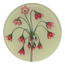 Cortusa Matthioli is a four inch round decoupage plate handmade in our New York City studio