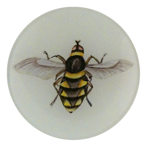 A four inch round decoupage plate titled Diamond Bee