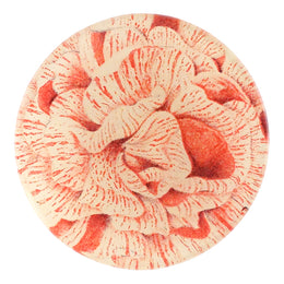 Balsaminen number six is a four inch round handmade decoupage  made in our New York City studio that is white and red