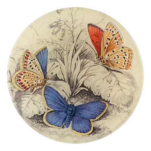 Copper & Common (Blue Butterflies (Entomology)) in a four inch round handmade decoupage plate